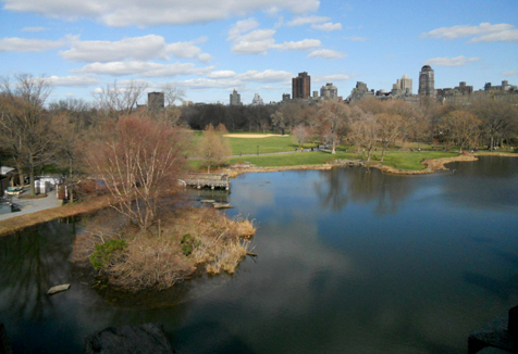 Things to do in new york central park for Things to do at central park